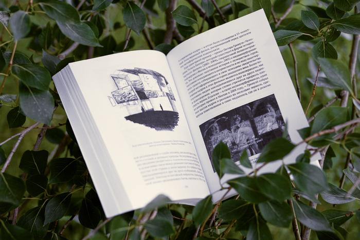 Александра Першеева оновой книге «Видеоарт. Монтаж зрителя»