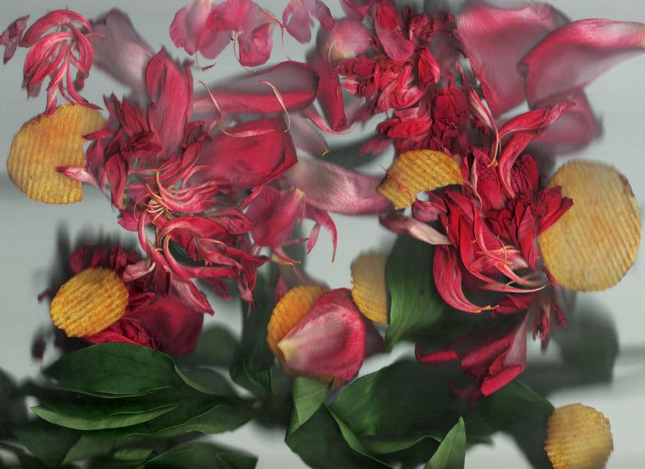 SCAN + FLOWERS
